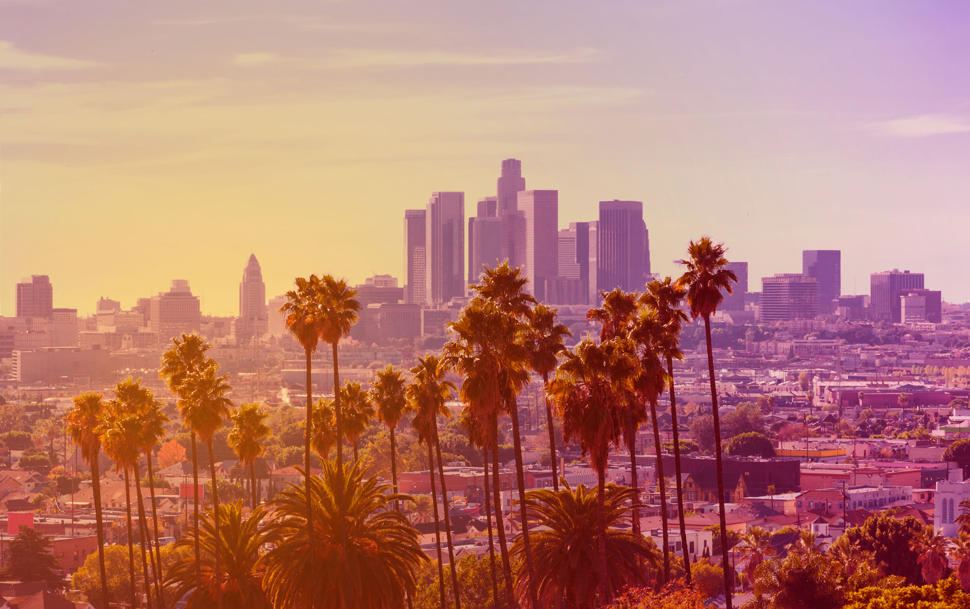Individual counseling in los angeles ca for In the city of la